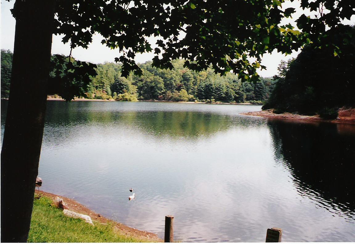 BearCreek.Lake.5